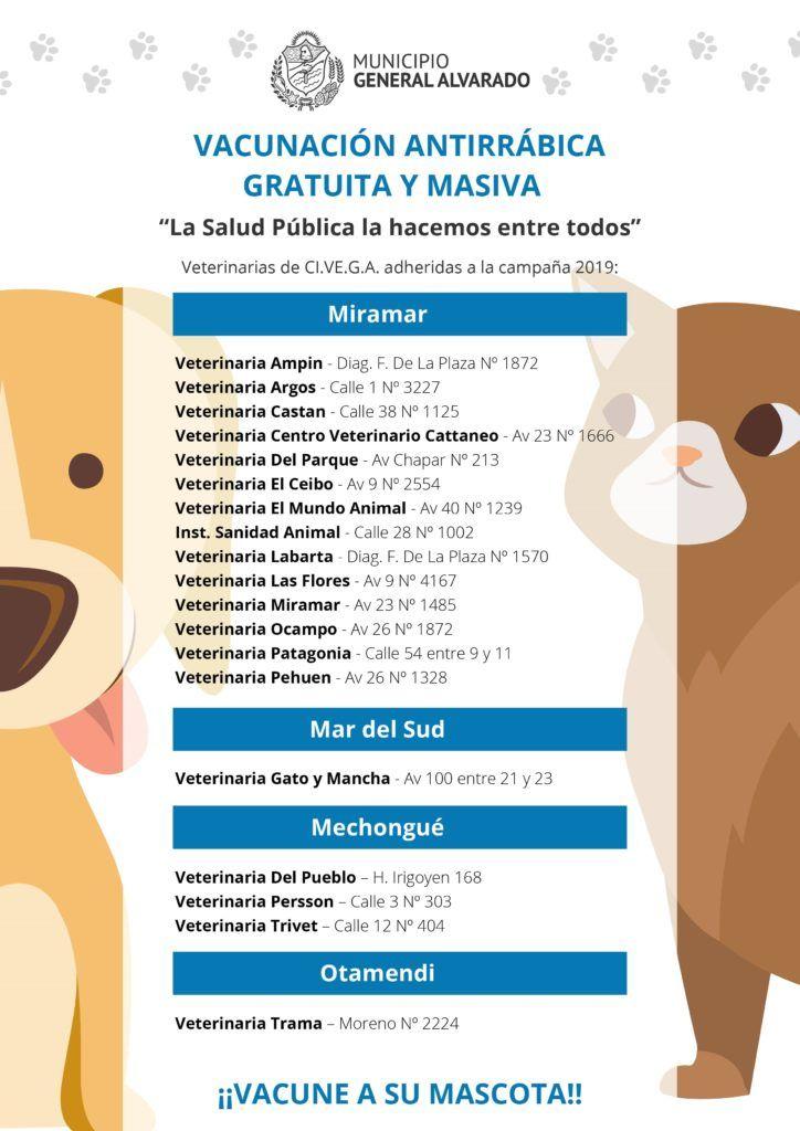 Vacunación antirrábica gratuita y masiva para perros y gatos campaña 2019.